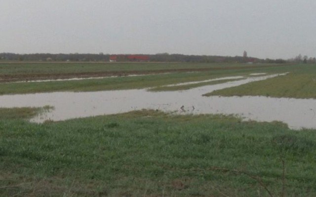 teren agricol calamitat