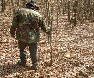 Câte controale, atâtea rezultate: inspecţiile de la Ocolul Silvic Valea Mare au fost făcute după cum a bătut vântul