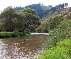 Medicii recomandă populaţiei să evite apa râului Mureş