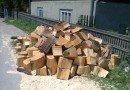 Transport ilegal de lemn depistat de poliţişti