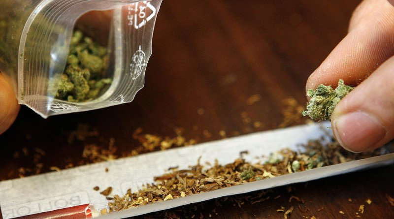 Canabisul, drogul preferat de arădeni; zeci de persoane au apelat la sprijinul Centrului Antidrog