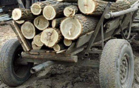 pe scurt lemne
