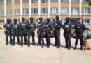 Jandarmeria vrea să cumpere grenade de mână cu efecte speciale, acustice şi luminoase